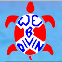 We B Divin